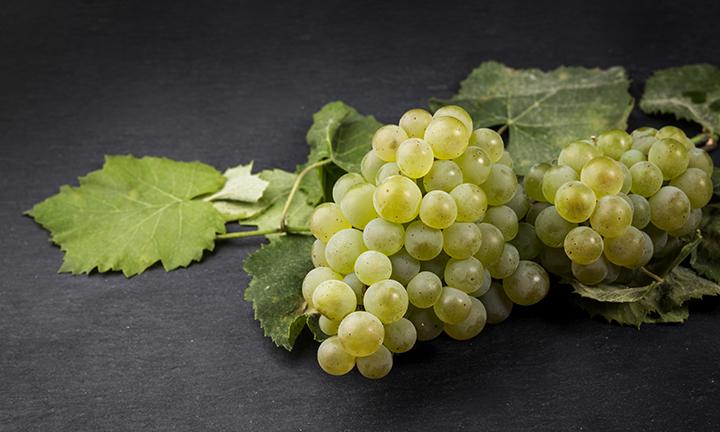 E se os brancos portugueses fossem vinhos de classe mundial?