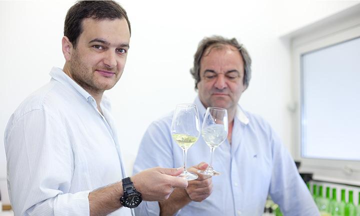 Diogo Lopes, Anselmo Mendes